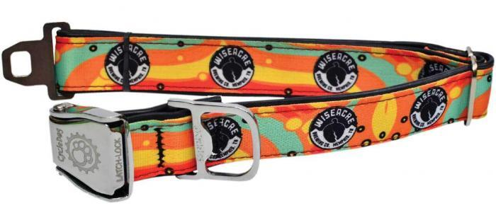 Custom Branded Dog Collar