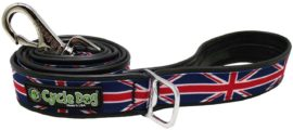 RegWidth-Leash-UK