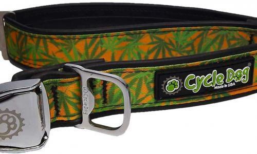 Cannabis Gold Dog Collar
